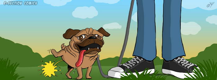 Facebook Cover Photo - Pug Peeing in Nature
