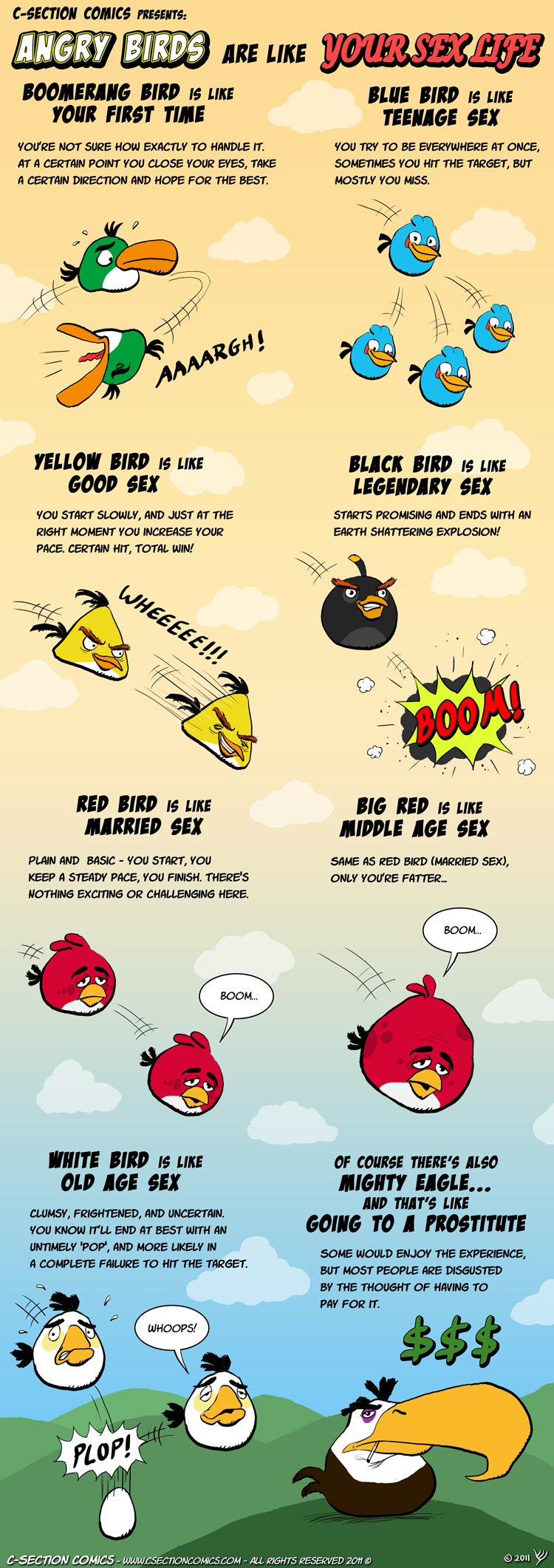 comic-2011-06-27-angry-birds-are-like-your-sex-life.jpg