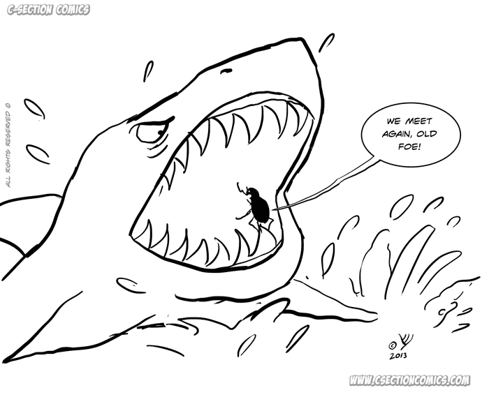 Shark vs. Beetle