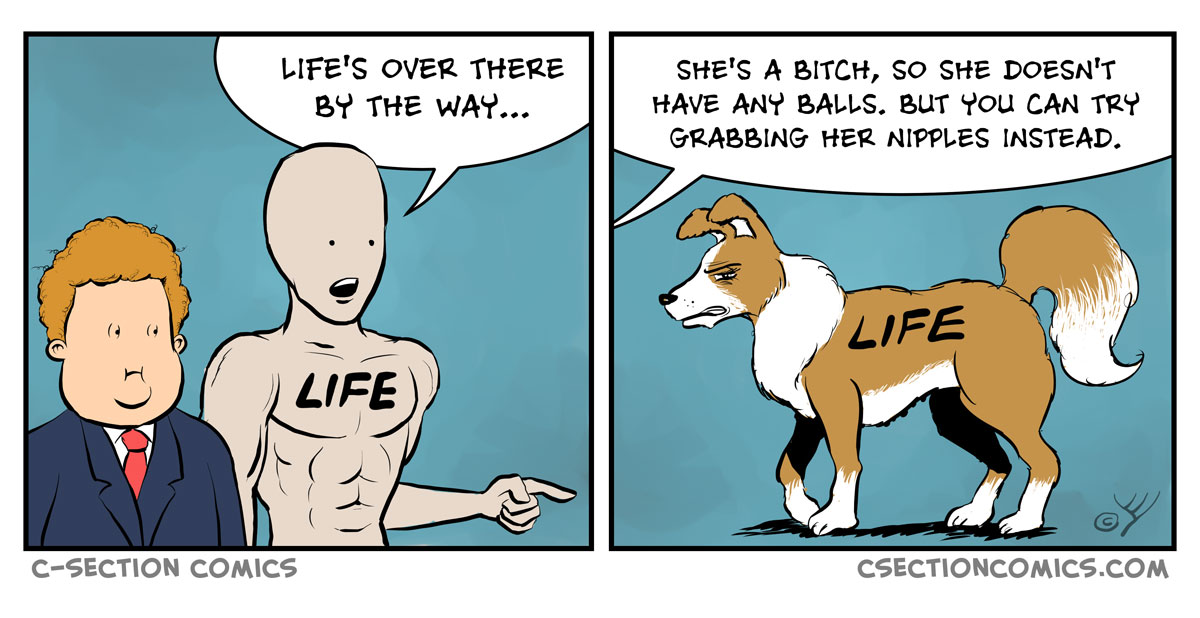 Life's a Bitch - by C-Section Comics