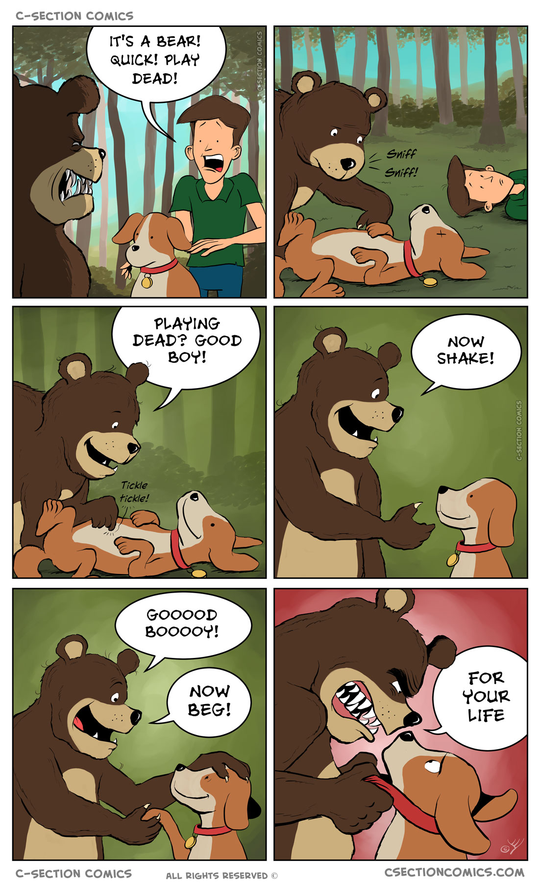 Drawing this comic was... un-bear-ably ruff  ----- ***(+5000 for DOUBLE PUN, LEVEL UP)***